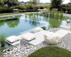 Here's a pipe dream, but still pretty cool. Natural swimming pond/pools. No chemicals. The plants and filter keep it clean.