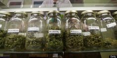 Fort Collins, CO Delays Recreational Marijuana Shops | The city council of Fort Collins, Colorado approved a temporary ban on recreational marijuana shops on Tuesday. The ban will be revisited in November and February, and is effective until March 31, 2014.
