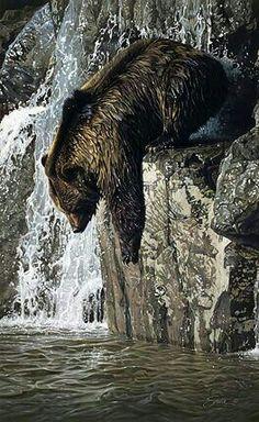 Diving Grizzly Bear! Types Of Animals, Animals And Pets, Funny Animals, Cute Animals, Lion Tigre, Mundo Animal, Bear Art, Wildlife Art, Black Bear