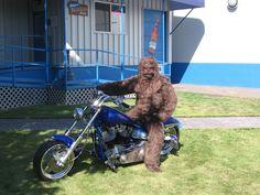 HarryDavison Motorcycle .