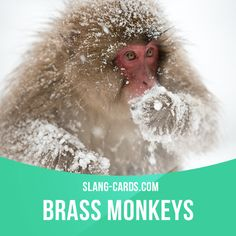 """""""Brass monkeys"""" means very cold weather.  Example: You need to wear a coat…"""