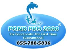 EPDM Liners for Pond leaks amd Fish Pond Repair. Pond pro 2000 is a liquid EPDM and compatable to your EPDM pond liner sold in pond supply stores. Epdm Pond Liner, Ponds Backyard, Garden Ponds, Pond Maintenance, Pond Painting, Building A Pond, Leak Repair, Pond Fountains, Pond Waterfall
