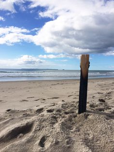 Burnt out wood, along Papamoa Beach, 2016. Photo by Kellie Rillstone. #whim_adventurous