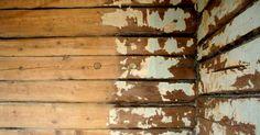 … можно дать если реставрировать стены сруба. Это просто и дёшево, можно сделать самостоятельно. Как правило, старые срубы снаружи шалеваны, а внутри обиты всякой хернёй. Отрываем и то и друг…