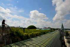 Warsaw rooftop garden library