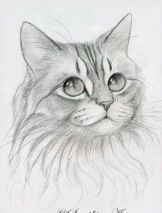 Art Drawings Sketches Simple, Animal Sketches, Pencil Art Drawings, Realistic Animal Drawings, Drawing Animals, Cat Tattoo Designs, Cat Sketch, Art Drawings Beautiful, Art Sketchbook