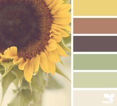 { color nature } image via: @jessamaephotography #color #palette #colorpalette #pallet #colour #colourpalette #design #seeds #designseeds