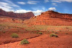 Desert scene by San Diego Shooter, via Flickr - Arizona