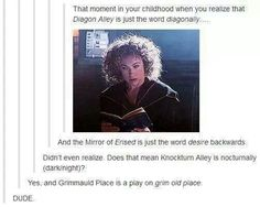 Okay, the books mention the mirror of Erised, and I wondered about Grimmauld...but seriously! It keeps getting better!