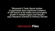 Bombshell Secret Documents Show Monsanto Knew About Glyphosate Link to Cancer Over 35 Years Ago - See more at: http://althealthworks.com/6119/6119glyphosateepacancerdocuments/#sthash.3IzQK7Yl.dpuf