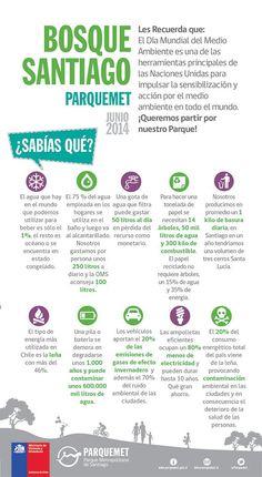 10 tips verdes que nos entrega Bosque Santiago