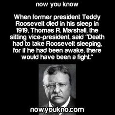 Interesting facts about nature, history, science, people, and the world. Learn something interesting today. Great Quotes, Me Quotes, Funny Quotes, Inspirational Quotes, Roosevelt Quotes, Theodore Roosevelt, Wtf Fun Facts, Random Facts, Warrior Quotes