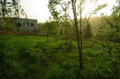Pour construire, il faut un terrain. Le notre est légèrement en pente, sur un coteau qui domine la ville de GAN.