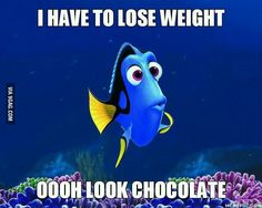 I have to lose weight ooooh look chocolate. .