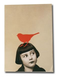 Birds illustration on pinterest 570 pins - Zoe de las cases ...