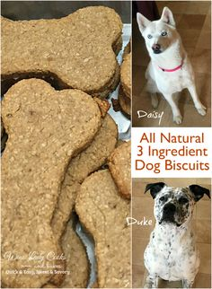 All Natural 3 Ingredient homemade dog biscuits, oatmeal, banana and peanut butter. Click thru for details.