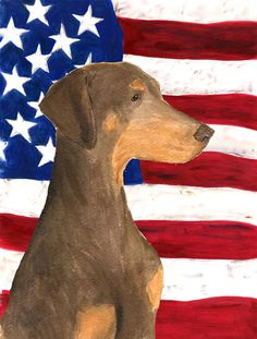 USA American Flag with Doberman Flag Canvas House Size