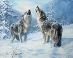 anime wolves wallpaper - Google Search