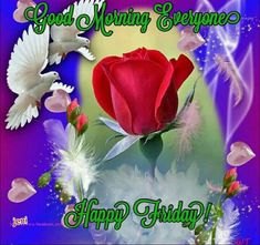 Rose Dove Good Morning Everyone morning friday happy friday good morning Good Morning Happy Friday, Good Morning Roses, Good Morning Everyone, Cute Good Morning Images, Beautiful Morning, Morning Greetings Quotes, Morning Quotes, Monday Coffee, Happy Friendship Day