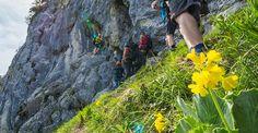 #Kletterpark #Spielmäuer #Wegscheid #Mariazell Summer Activities, Austria, Landscapes, Events, Vacation, Nature, Blog, Climbing, Paisajes