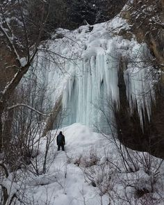 Ice falls everywhere!  #icecave #iceclimbing #waterfall #rifle #colorado #riflemountainpark #explore #winter #ilovecolorado #coloradolive #coloradohikes #coloradohikingorg #colorado! by nerdybackpacker https://www.instagram.com/p/BA41vlEh_1-/