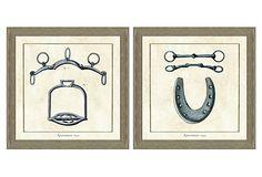 Horse Tack Print Set I on OneKingsLane.com