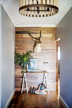 Timber feature wall in enterance