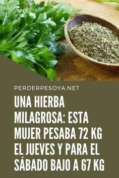 Esta una receta para preparar té de perejil que una anciana bosnia compartió con nosotros. Tilapia, Keto Recipes, Detox, Health Fitness, Healthy, Nature, Plants, Food, Control