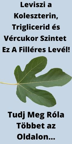 Diabetes, Plant Leaves, Herbs, Health, Diet, Good To Know, Losing Weight, Hungary, Health Care