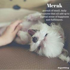 merak meaning