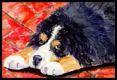 Outdoor Décor-Carolines Treasures SS8842MAT Bernese Mountain Dog Indoor Outdoor Doormat 18 x 27 Multicolor ** Continue to the product at the image link.