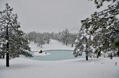 Nevado en Diciembre 2013