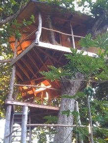 Kauai Treeehouse by Jay Nelson
