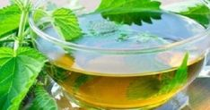 Tulsi tea is the best way to cure the cough & cold in a natural way. Here are our top 10 tulsi tea benefits along with side effects. Natural Health Remedies, Herbal Remedies, Natural Hair Regimen, Natural Hair Styles, Nettle Tea Benefits, Health Benefits, Nettle Leaf Tea, Tulsi Tea, Alkaline Foods