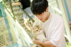 Dont You Know, Chinese Boy, Idol, Actors, Guys, Animals, Cat, Animales, Animaux