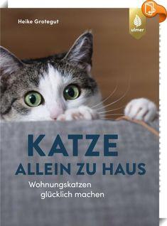 Heike Grotegut Katzenpsychologie Startseite Facebook