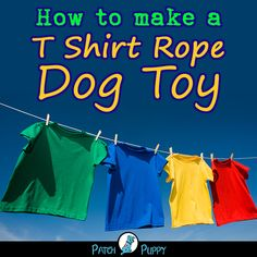 Toys can be fantastic help in keeping your dog captivated even when no one else is around to play with them. Homemade Dog Toys, Diy Dog Toys, Shelter Dogs, Animal Shelter, Shelters, Animal Rescue, Trimming Dog Nails, Tough Dog Toys, Interactive Dog Toys