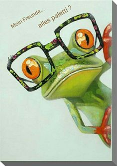 painting of frog with glasses - Bing images Animal Paintings, Animal Drawings, Art Drawings, Funny Paintings, Funny Frogs, Cute Frogs, Art Fantaisiste, Frog Drawing, Frog Pictures