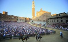 When is the Palio di Siena and how can I see it?