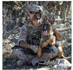 K9 support