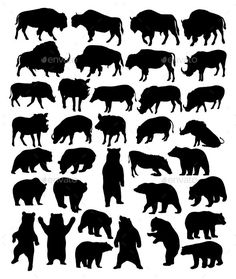 Bison Bear and Wild Boar Silhouettes