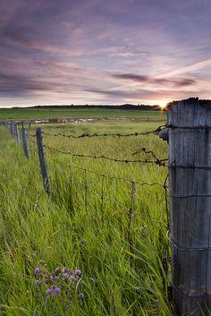 Prairie sunset... Talk about home sick