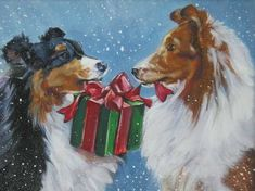 Collie greeting card.