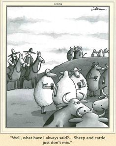 Trendy funny cartoons far side Ideas Funny Memes For Him, Love Memes For Him, Funny People Quotes, Wtf Funny, Funny Cute, Far Side Cartoons, Far Side Comics, Funny Cartoons, Funny Comics