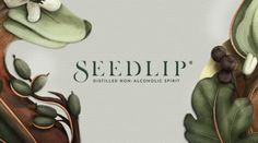 The Dieline Awards 2016: Seedlip- Pearlfisher — The Dieline - Branding & Packaging