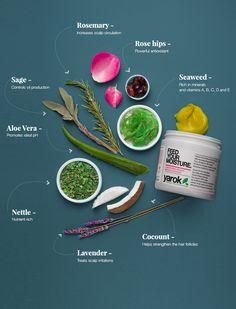 Yarok Feed Your Moisture Hair Masque Organic Hair Care, Organic Beauty, Hair Masque, Beauty Boutique, Natural Beauty Tips, Aloe Vera Gel, Moisturizer, Ethnic Recipes, Food