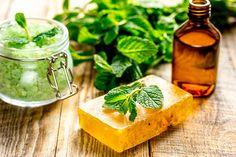 Přírodní kosmetika vyrobená z meduňky. Herbal Extracts, Citronella, Potpourri, Pesto, Cantaloupe, Herbalism, Mint, Organic, Cosmetics