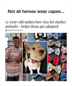 Faith In Humanity Restored 20 Pics Animals And Pets, Baby Animals, Cute Animals, Funny Animals, Cute Dogs, Cute Babies, Cute Animal Memes, Animal Help, All Hero