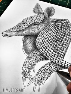 Progress 2 pic of my Armadillo. Drawing with a Tombow Zoom L105 ballpoint Pen