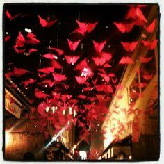 Butterflies in Ponte Vecchio Florence